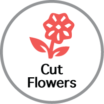 Cut Flowers icon