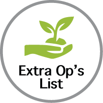 Extra Options Icon