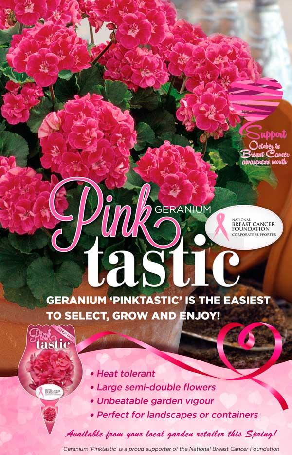 Geranium Pinktastic Advert