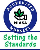 Accredited NIASA Nursery - Setting The Standards